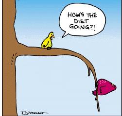 dukan blog diarion diéta